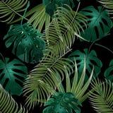 Arvoredos da selva de folhas de palmeira tropicais Teste padrão floral sem emenda Isolado em um fundo preto Ilustração ilustração do vetor