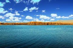 Arxan lasu państwowego Halny park Obrazy Royalty Free