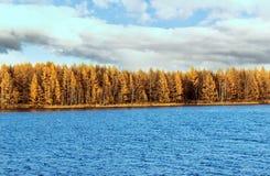 Arxan lasu państwowego Halny park Fotografia Royalty Free