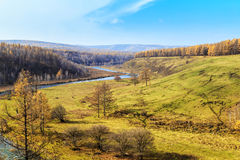 Arxan sceneria w Wewnętrznym Mongolia Fotografia Royalty Free