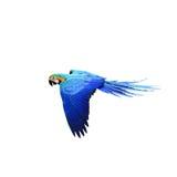 Ary papuga odizolowywająca na białym tle Obraz Stock