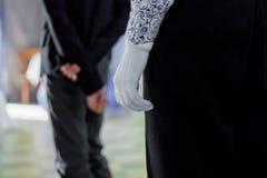 arystokratyczny rękawiczka jest biała obrazy stock