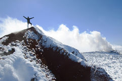 Arywista na szczycie Avacha wulkan Obraz Royalty Free