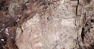 Arywista wspina się skałę Dziewczyna i chłopiec wspinamy się skałę Rockowego pięcia lekcje zdjęcie wideo