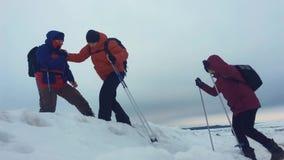 Arywisty pomaga współczłonek drużyny wspinać się mężczyzna z plecakiem dosięgał out pomocną dłoń jego przyjaciel Trzy arywisty na zdjęcie wideo