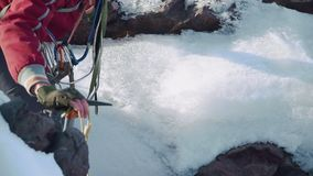 Arywisty puszek halny szczelinowy, opierający na jego ręce i lodowym wyborze Plecaka na jego bezpieczeństwie i ramionach zbiory wideo