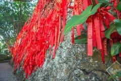 As árvores altas são decoradas completamente com fitas vermelhas muitas fitas vermelhas amarradas às árvores Ásia Foto de Stock Royalty Free
