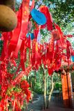 As árvores altas são decoradas completamente com fitas vermelhas muitas fitas vermelhas amarradas às árvores Ásia Fotos de Stock