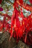 As árvores altas são decoradas completamente com fitas vermelhas muitas fitas vermelhas amarradas às árvores Ásia Fotografia de Stock