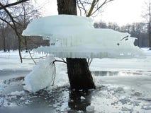 As árvores com gelo remendam após a inundação, Lituânia imagem de stock