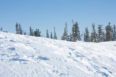 As árvores da paisagem da natureza tendem à montanha da neve do céu Fotografia de Stock Royalty Free