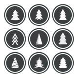 As árvores de Natal ajustaram-se Imagens de Stock Royalty Free