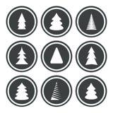 As árvores de Natal ajustaram-se Imagem de Stock