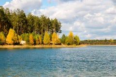 As árvores do outono aproximam o lago naughty foto de stock