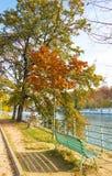 As árvores do outono em Ile Cygnes auxiliar, Paris, França Imagem de Stock Royalty Free