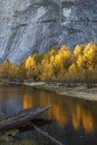 As árvores douradas ensolarados vibrantes refletiram na água na meia abóbada, Yosemite foto de stock