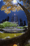 As árvores em Kuala Lumpur Imagens de Stock Royalty Free
