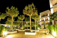 As árvores na iluminação da noite no hotel de luxo imagem de stock