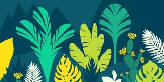 As árvores são tropicais largo-com folhas, samambaias Paisagem da montanha Estilo liso Preservação do ambiente, florestas parque, ilustração do vetor