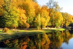 As árvores vermelhas e verdes da paisagem brilhante do outono - na costa do lago são refletidas na água imagens de stock