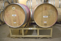 As adegas de Newton Winery em Napa Valley foto de stock
