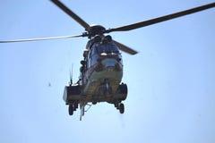 AS-532 AL美洲狮 免版税库存照片