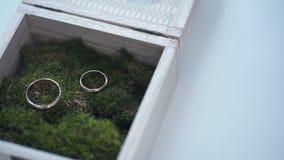 As alianças de casamento em uma caixa de madeira encheram-se com o musgo na grama verde casamento Anel de casamento Anel de noiva Fotos de Stock Royalty Free