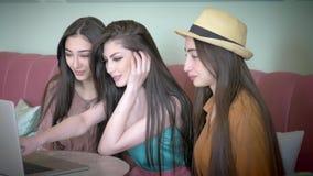 As amigas bonitas falam trabalhos em rede sociais com amigos a cafetaria de assento tem o sorriso do riso do divertimento vídeos de arquivo