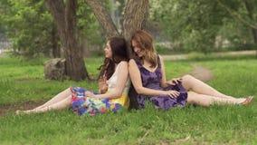 As amigas em um verão estacionam o assento perto de uma árvore na grama Duas meninas bonitas passam o tempo junto, riem, sorriem video estoque