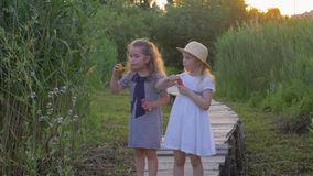 As amigas pequenas bonitos fundem as bolhas que estão na ponte de madeira na natureza entre a grama verde video estoque