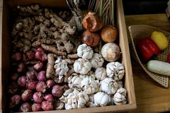 As amostras de produzem são colocadas na caixa de madeira Foto de Stock Royalty Free