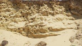 As andorinhas aninham-se na montanha da areia filme