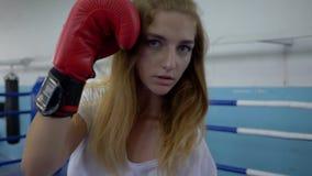As artes marciais, pugilista forte da menina dos esportes executam sopros na câmera no anel video estoque
