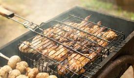 As asas de galinha na grade prepararam-se nos carvões fotografia de stock royalty free