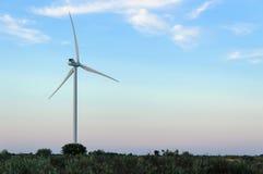As asas do vento Imagens de Stock Royalty Free