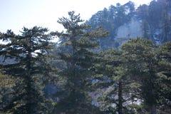 As atrações turísticas famosas no chinês da província de Shaanxi, montanha de Huashan Imagem de Stock Royalty Free