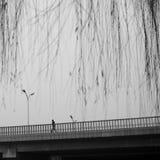 As autoridades do Pequim impulsionam o nível do vermelho do alerta de poluição atmosférica Fotografia de Stock