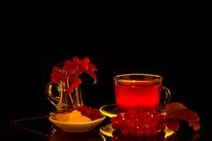 As bagas do Viburnum e a bebida vermelha no contorno iluminam-se imagens de stock royalty free