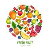 As bagas e os frutos projetam ilustração stock
