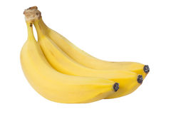 As bananas isoladas no fundo branco Fotografia de Stock
