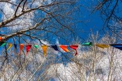 As bandeiras coloridas triangulares penduram em uma corda branca entre os ramos das árvores contra o céu azul com nuvens brancas Imagens de Stock Royalty Free