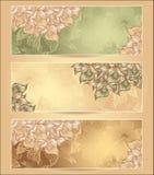 As bandeiras florais abstratas ajustadas com flores descascam o SE Imagens de Stock