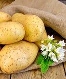 As batatas amarelam com a flor no pano de saco e na placa Imagens de Stock Royalty Free