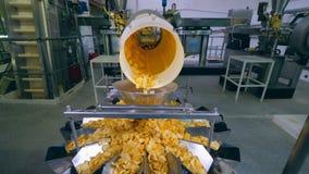 As batatas fritas estão derramando de um mecanismo industrial vídeos de arquivo