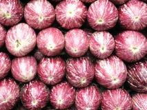 Beringelas frescas na tenda do mercado Imagens de Stock Royalty Free
