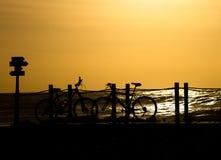 As bicicletas mostram em silhueta no por do sol foto de stock