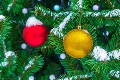 As bolas amarelas e vermelhas do Natal no abeto ramificam na neve Natal fotografia de stock royalty free
