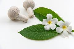 As bolas tailandesas da compressa da massagem dos termas, bola erval e termas do tratamento, relaxam e cuidado saudável com flor  Imagem de Stock Royalty Free