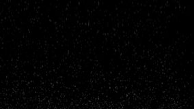 As bolhas na água jejuam aumentando acima ou fervendo Animação de Loopable 3d da água gasosa nos fundos brancos e pretos video estoque