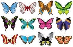 As borboletas ajustaram-se Imagens de Stock Royalty Free